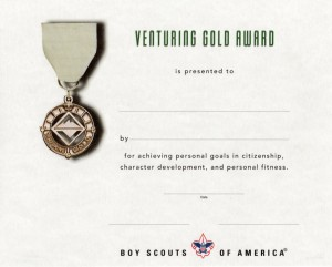 Gold Award Certificate
