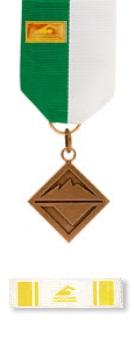 Sports Bronze Award